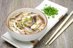 Chinese food - soup with chicken, mushrooms and green onions Royalty Free Stock Image