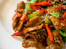 Chinese food stir-fried duck with basil and green and red peppers. Put on a white plate. It is so fragrant and delicious Royalty Free Stock Images