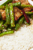 Chinese  food-String beans and  meat Royalty Free Stock Photo