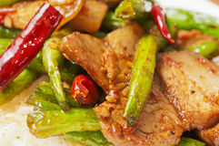 Chinese  food-String beans and  meat Royalty Free Stock Photos