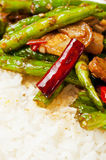 Chinese  food-String beans and  meat Stock Images