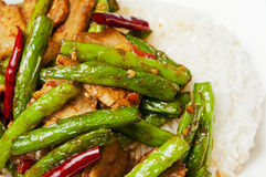 Chinese  food-String beans and  meat. String beans and  meat  with  rice Stock Photo
