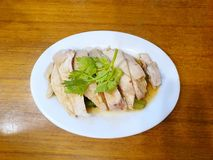 Chinese food style, Top view of steamed chicken topped with coriander. In white plate on wooden table, Hainanese chicken rice set, Khao Man Kai or Kai Sab is royalty free stock image