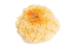 Chinese food tremella fuciformis white fungus . Royalty Free Stock Image