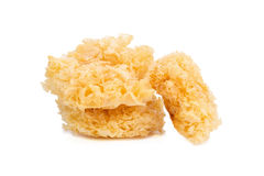 Chinese food tremella fuciformis white fungus isolated. Stock Photo