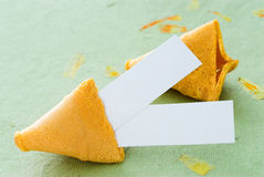 Chinese Fortune Cookie. With blank space for your message Royalty Free Stock Images