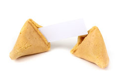 Chinese fortune cookie with blank paper. On white background royalty free stock images