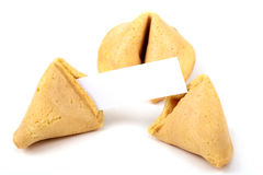 Chinese fortune cookie with blank paper. On white background stock photo