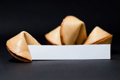 Chinese fortune cookies. On black background Royalty Free Stock Photo