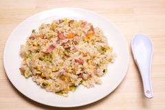 Chinese fried rice. On dish with china spoon Stock Photography
