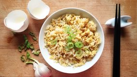 Chinese fried rice Royalty Free Stock Photos