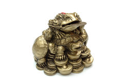 Chinese frog with coins. Isolated. Stock Photos