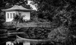 Chinese Garden  Black & White. Chinese pagoda and bridge over water pond. Black and white image Stock Images