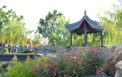 China garden Stock Photo