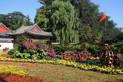 Chinese garden with colorful flowers Stock Images