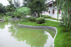 Chinese garden with fish pond Royalty Free Stock Image