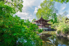 Chinese garden in Frankfurt Royalty Free Stock Photos