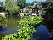 Chinese garden. S and pond in Portland, Oregon Stock Image