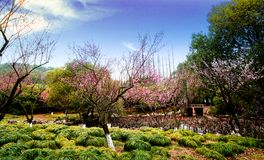 Chinese garden King. Garden is a kind of art for people to visit and entertain, and create scenery with their own hands. Due to the different understanding and Royalty Free Stock Photos
