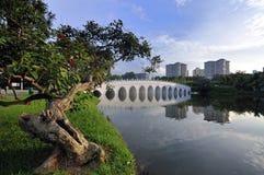 Chinese Garden Moon-bridge. A moon-bridge at Singapore's Chinese Garden Royalty Free Stock Images