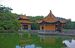 Chinese garden, pond and pavilions Stock Images