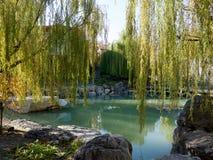 A Chinese garden Stock Photos