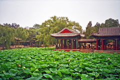 Chinese garden in summer palace, Beijing, China. Chinese garden pavilions seen across the pond covered with nenufars and water plants in summer palace, Beijing royalty free stock photography
