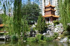 Chinese garden in Sydney, spring time stock photos