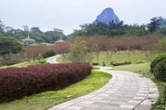 Chinese garden with winding path Stock Photography