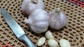 Chinese garlic and a garlic punch. Stock Image