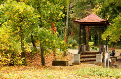 Chinese gazebo in autumn park Stock Images