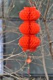 Chinese geroepen lantaarns en lantaarn stock afbeeldingen