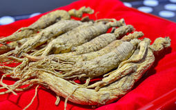 Chinese ginseng. Box of Chinese ginseng herb Stock Images