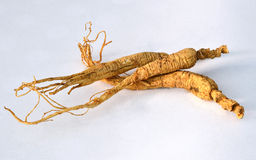Chinese ginseng Royalty Free Stock Photos