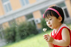 Chinese girl. The Chinese girl looking at the dandelion and blowing the dandelion Royalty Free Stock Photos