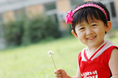 Chinese girl. The dandelion in the  Chinese girl's hands Royalty Free Stock Photos