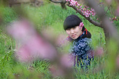 Chinese girl back peach tree Royalty Free Stock Photography