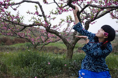 A chinese girl in peach garden Royalty Free Stock Images