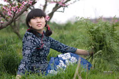 Chinese girl at peach garden Royalty Free Stock Photography