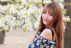 Chinese girl with pear flowers. Charming Chinese girl with long hair smiling with pear flowers outdoor portrait Royalty Free Stock Images