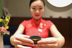 Tea art of China,drink tea. A Chinese girl in traditional dress Red cheongsam is performing tea art. China has history of tea culture for more than one thousand Royalty Free Stock Photo
