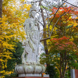 Chinese Goddess At Zojoji Temple Stock Photos