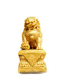 Chinese gold lion isolated on white background. Selective focus on the head of a lion Stock Photo