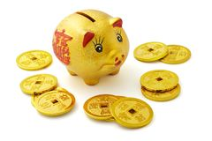 Chinese gold piggy bank and coins. On white background Stock Image