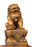 Chinese Golden lion. Statue with isolate background royalty free stock images