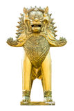 Chinese Golden lion statue isolated Stock Image