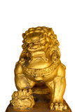 Chinese Golden Lion Stock Image
