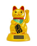 Chinese good luck cat. A chinese good luck cat royalty free stock images