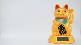 Chinese good luck cat stock video footage
