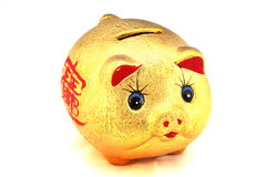 Chinese good luck pig Stock Photo